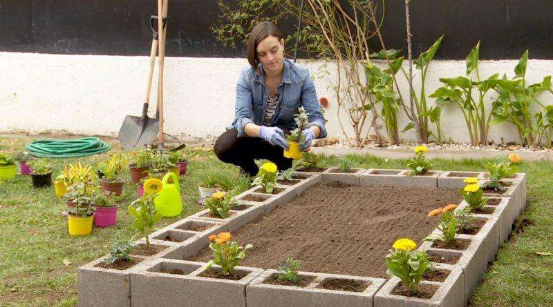Trabaja en tu jardín o haz un mini vivero